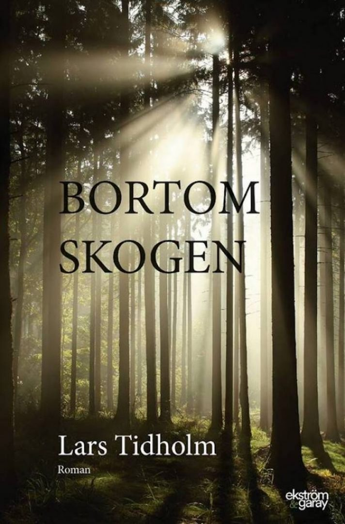 lars-tidholm-bortom-skogen
