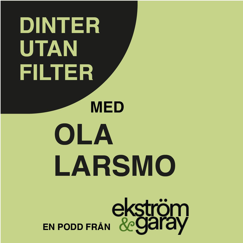 dinter-utan.filter-08-ola-larsmo